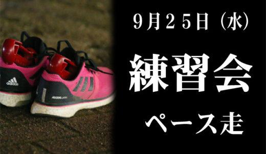 9月25日練習会(ペース走)