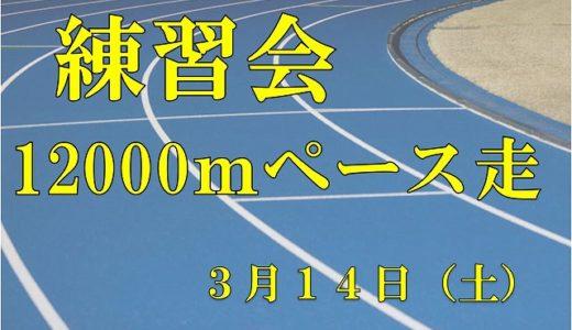 3月14日練習会 12Kmペース走